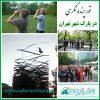 پرنده نگری در پارک شهر