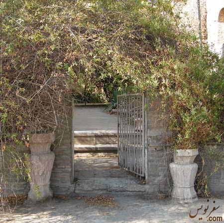 تصویر و عکس گلهای نسترن و گلیسرین خانه و باغ اتحادیه (امین السلطان ، دایی جان ناپلئون)