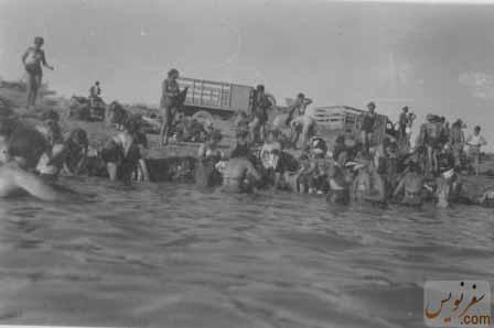 بانوان و مردان لهستانی در حال شنادر ساحل دریای خزر