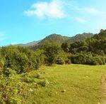 محوطه جنوبی روستای چلندر ، پایین دست آبشار چلندر - عکس(نجما اکبری)