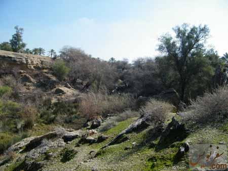 دره سرسبز آبشار زیرراه