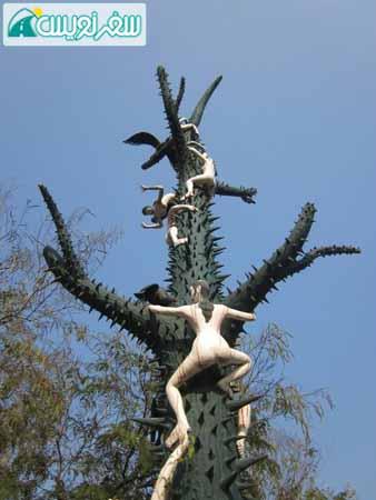 ن و مردان کار تایلندی در حال بالا رفتن از درخت